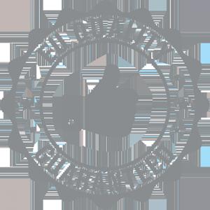 EU quality guaranteed